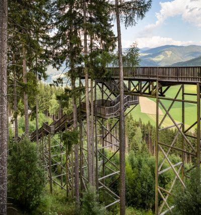 Wipfelwanderweg, Rachau, Steiermark
